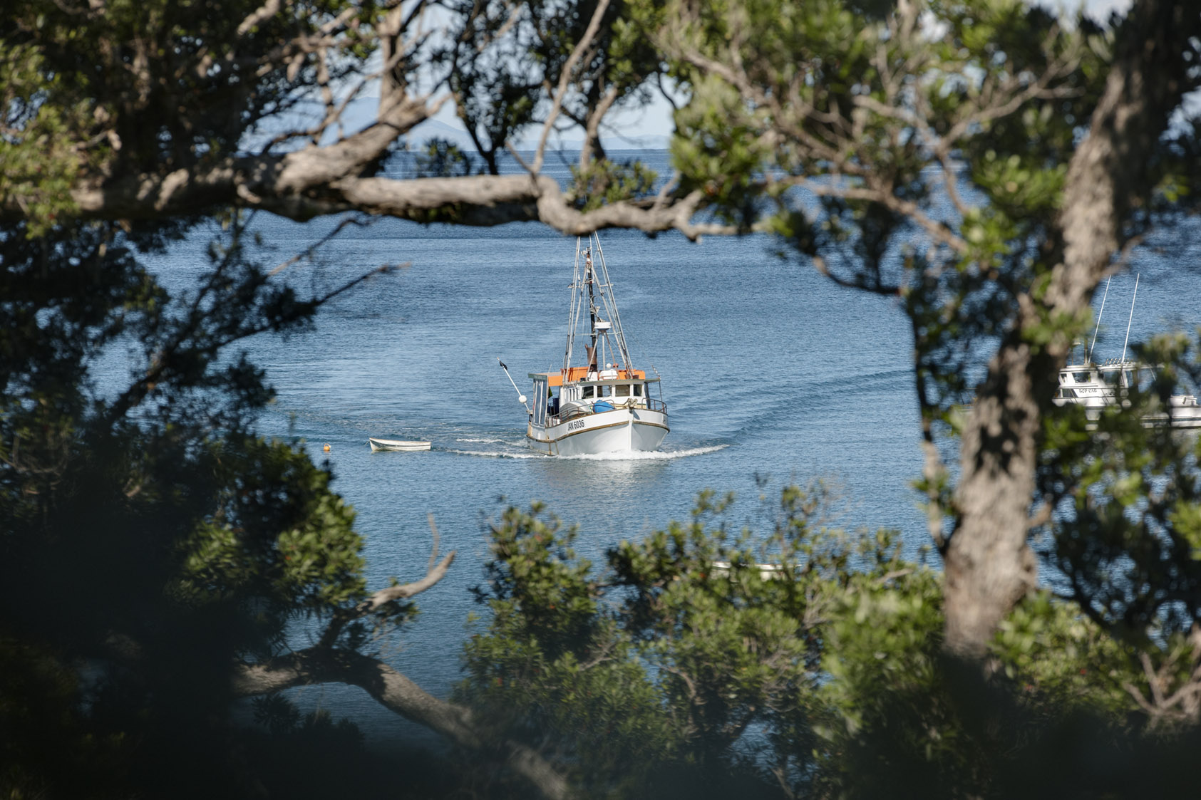 Leigh Fishing Boat - Our Story