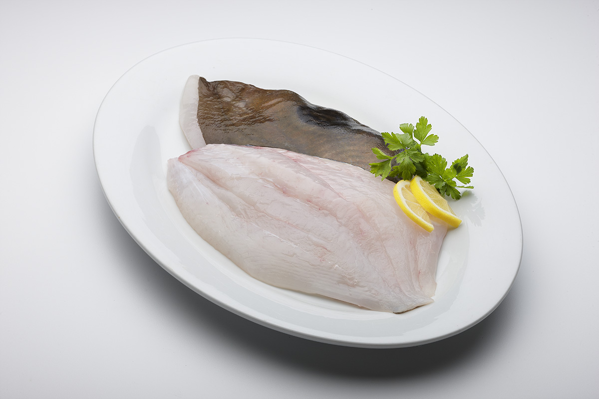 Lee fish usa john dory for New zealand ling fish